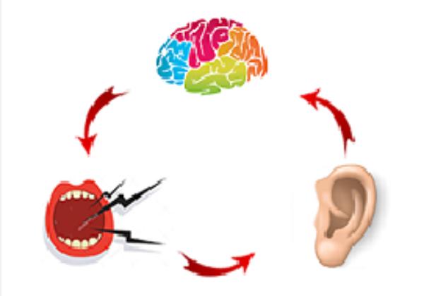 למה אנשים עם שמיעה מוזיקלית הם גם בעלי מוח מפותח?